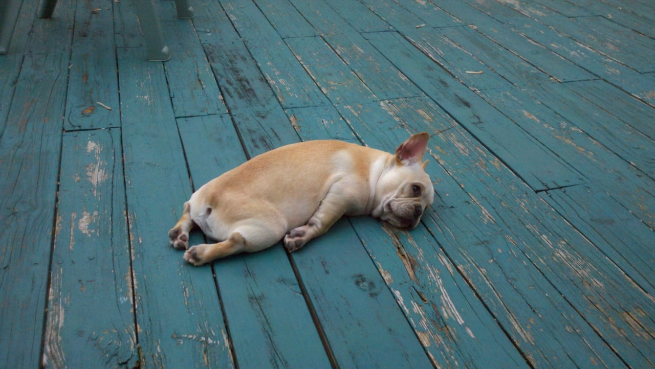 Fatigué d'être toujours fatigué ? 2